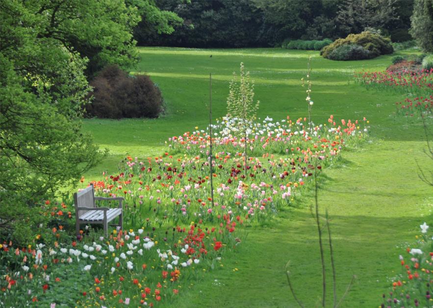 Arboretum Kalmthout 2012